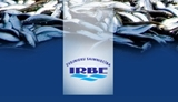 Picture for manufacturer IRBE