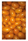 Picture of Tomatoes Yellow plume (box*9) £/kg