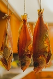 Picture for category Dry Fish