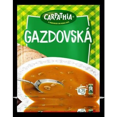 Picture of GAZDOV SOUP 54g CARPATHIA